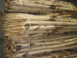 Kastanjehouten palen 1.6m