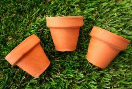 Mini terracotta bloempotjes (2 of 5cm), 3 stuks