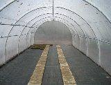 Tunnelfolie 10m breed
